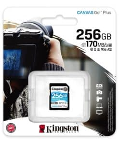 Kingston SD 256GB CanvasGoPlus